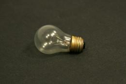Victory Shatterproof Light Bulb 50357702 115V 50357702